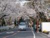 Kamakurayama